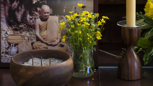 The Force of Bhava-tanha