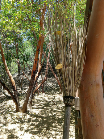 Six - Brooms and Sweeping